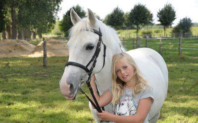 Pony Power voor Kids: sociale vaardigheidscursus